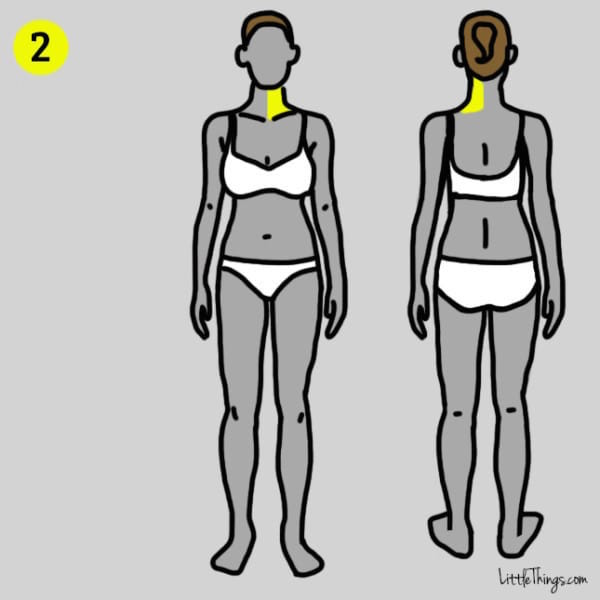 polmoni-diaframma 2